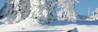 Silvester mit Rundfahrt im Harz