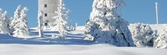 Harz mit Ausflugsprogramm