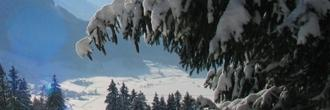 Silvester im Thüringer Wald - Bad Tabarz