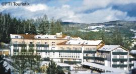 Viechtach Hotel am Pfahl